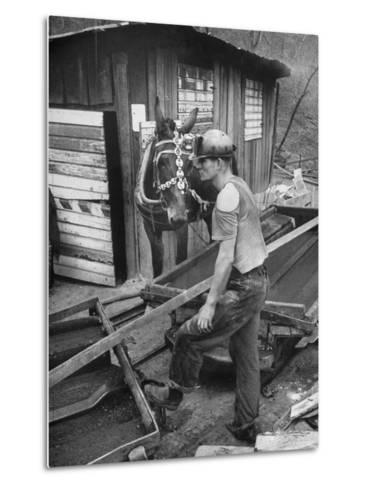 A Miner Standing with a Mule at the Rock House Coal Co. Mine--Metal Print