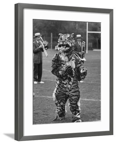 The Princeton Mascot, a Tiger--Framed Art Print