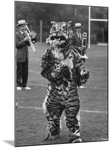 The Princeton Mascot, a Tiger--Mounted Photographic Print
