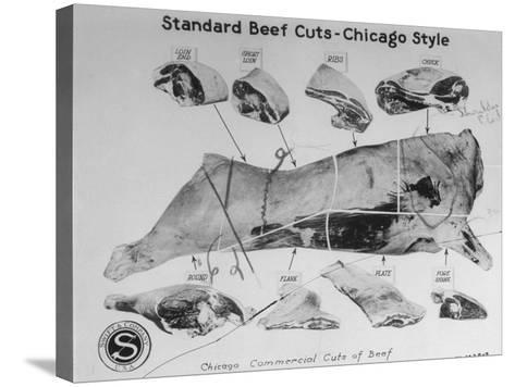 A View of a Meat Poster Showing Different Parts of a Cow from a Story Concerning Army Rations--Stretched Canvas Print