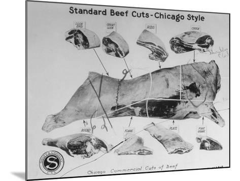 A View of a Meat Poster Showing Different Parts of a Cow from a Story Concerning Army Rations--Mounted Photographic Print