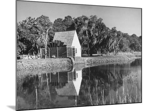 Water Wheel on the Boone Plantation, Owned by Thomas A. Stone--Mounted Photographic Print