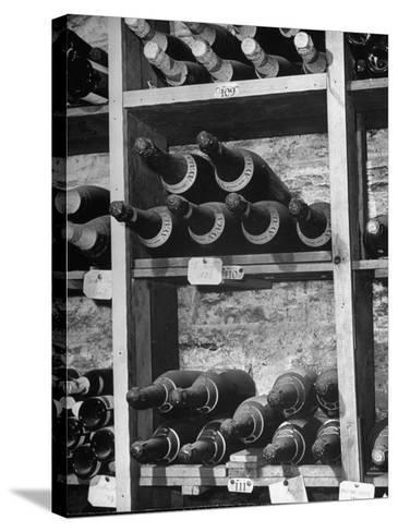 Dust Covered French Vintage Champagnes Lying on Racks in the Wine Cellar--Stretched Canvas Print