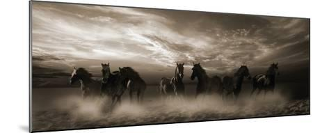 Wild Stampede-Malcolm Sanders-Mounted Giclee Print