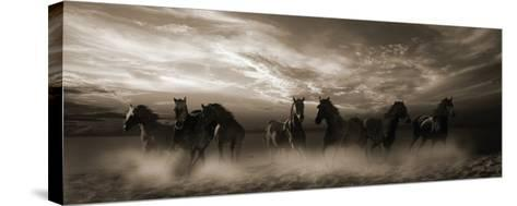 Wild Stampede-Malcolm Sanders-Stretched Canvas Print