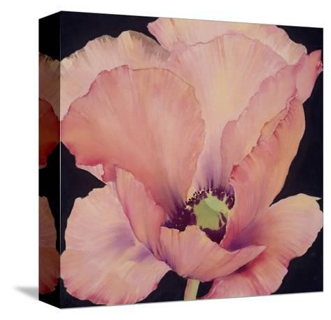 Delicate Pink Poppy-Maggie Thompson-Stretched Canvas Print