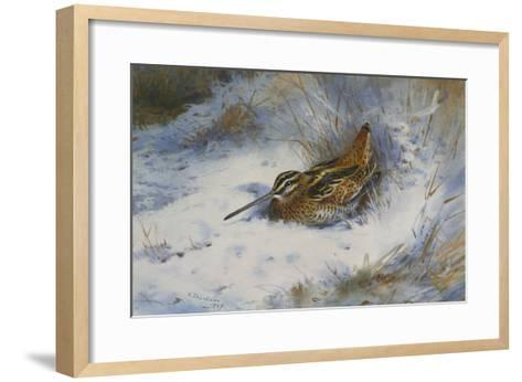 A Snipe in the Snow-Archibald Thorburn-Framed Art Print