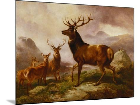 A Proud Stag-Samuel John Carter-Mounted Giclee Print