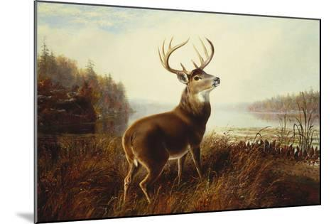A Stag by a Lake-Arthur Fitzwilliam Tait-Mounted Giclee Print