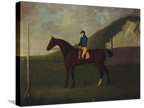 Creeper' a Bay Colt with Jockey Up at the Starting Post at the Running Gap in the Devils Ditch,…-John Nost Sartorius-Stretched Canvas Print