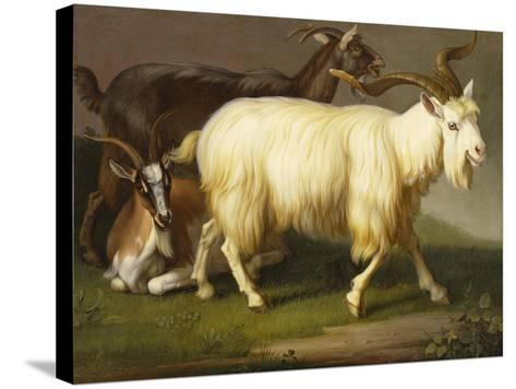 Billy Goats-Johan Wenzel Peter-Stretched Canvas Print