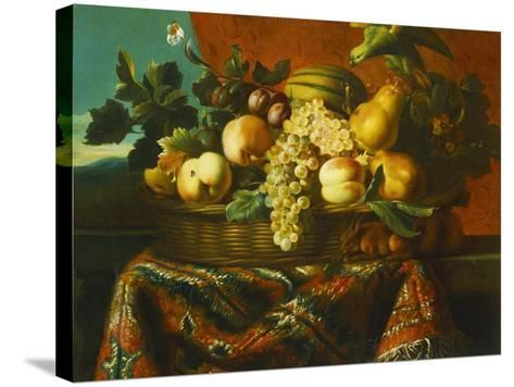 Grapes, Peaches, Plums, Pears and a Melon in a Basket with a Parakeet, a Red Squirrel and a…-Pierre Dupuis-Stretched Canvas Print