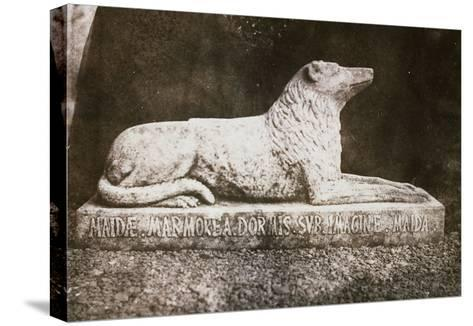 Effigy of Sir Walter Scott's Favourite Dog, Maida-William Henry Fox Talbot-Stretched Canvas Print
