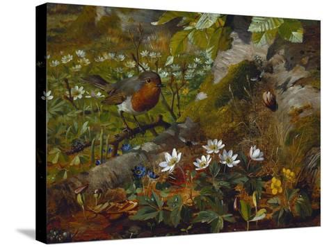 A Robin at the Foot of a Tree-Olaf August Hermansen-Stretched Canvas Print