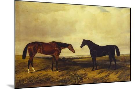 The Earl of Granards's Bright Bay Filly and Dark Bay Stallion Standing in an Extensive Landscape-William Luker-Mounted Giclee Print