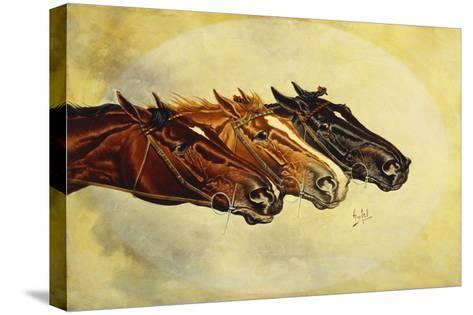 The Celebrated Race Horses 'Henry of Navarre', 'Monitor' and 'Dominoe'-Henry Stull-Stretched Canvas Print