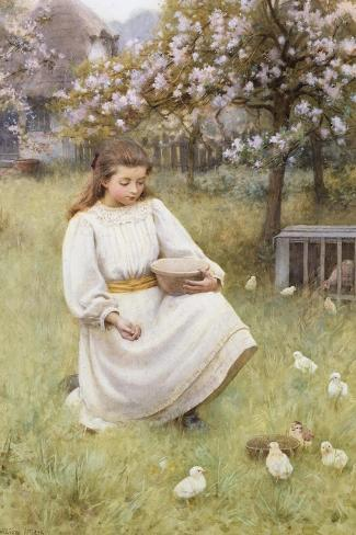 Feeding Time-William Affleck-Stretched Canvas Print