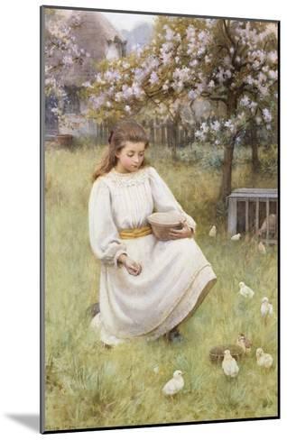 Feeding Time-William Affleck-Mounted Giclee Print