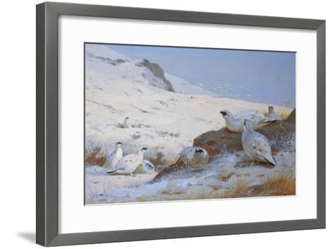 Ptarmigan-Archibald Thorburn-Framed Art Print