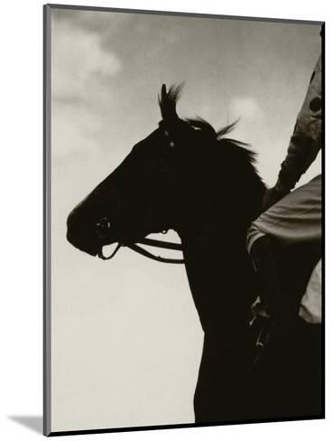 Vanity Fair - December 1930-Edward Steichen-Mounted Premium Photographic Print