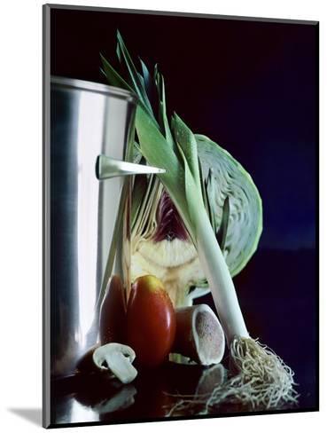 House & Garden - January 1963-Fotiades-Mounted Premium Photographic Print