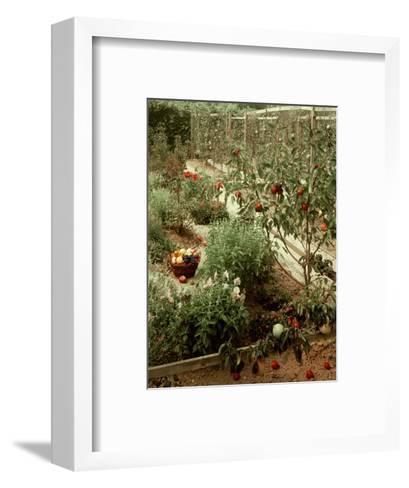 House & Garden - January 1956-Andr? Kert?sz-Framed Art Print