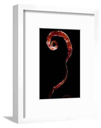 Gourmet - October 2006-Romulo Yanes-Framed Art Print