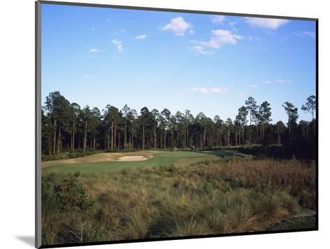 LPGA Legends Golf Course, Hole 4-Stephen Szurlej-Mounted Premium Photographic Print