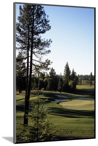 Osprey Meadow at Tamarack Resort, Hole 18-Stephen Szurlej-Mounted Premium Photographic Print