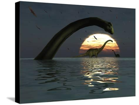Diplodocus Dinosaurs Bathe in a Large Body of Water-Stocktrek Images-Stretched Canvas Print