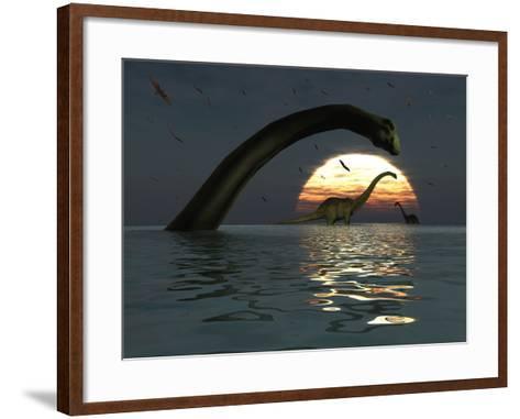 Diplodocus Dinosaurs Bathe in a Large Body of Water-Stocktrek Images-Framed Art Print