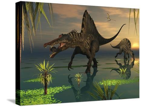 Artist's Concept of Spinosaurus-Stocktrek Images-Stretched Canvas Print