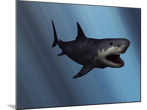 A Megalodon Shark from the Cenozoic Era-Stocktrek Images-Mounted Photographic Print