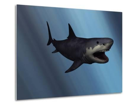 A Megalodon Shark from the Cenozoic Era-Stocktrek Images-Metal Print
