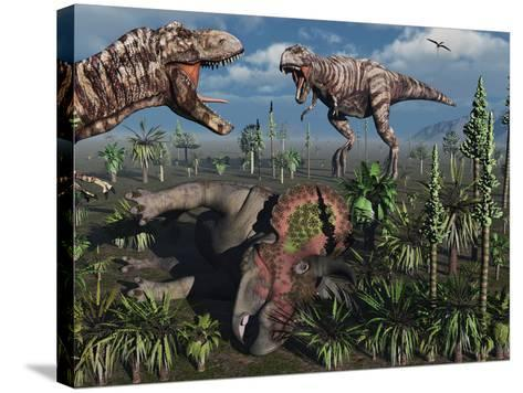 Two T. Rex Dinosaurs Confront Each Other over a Dead Triceratops-Stocktrek Images-Stretched Canvas Print