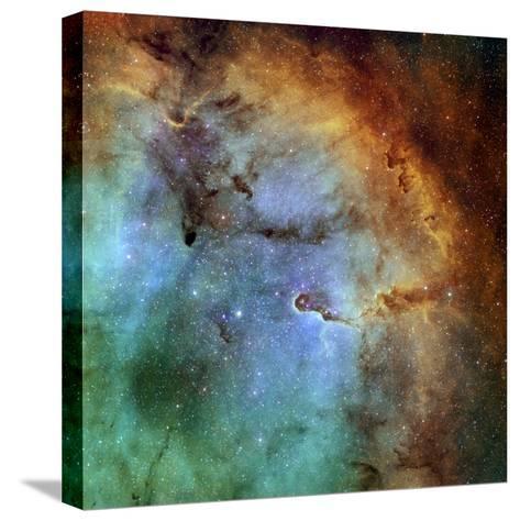 The Elephant Trunk Nebula-Stocktrek Images-Stretched Canvas Print
