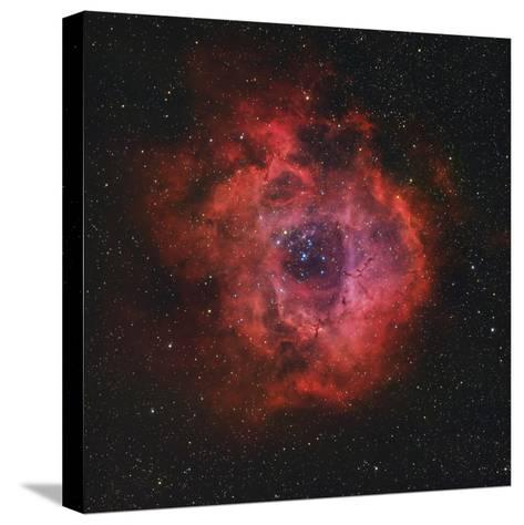 The Rosette Nebula-Stocktrek Images-Stretched Canvas Print