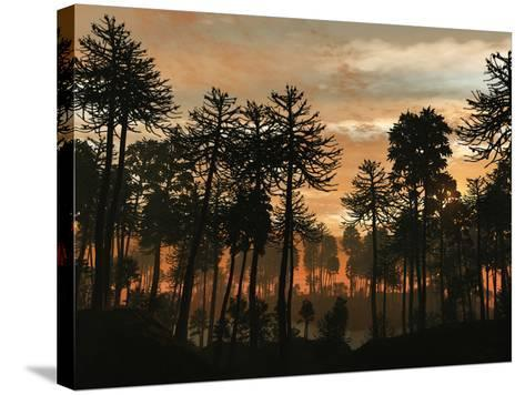 A Forest of Cordaites and Araucaria Silhouetted Against a Colorful Sunset-Stocktrek Images-Stretched Canvas Print
