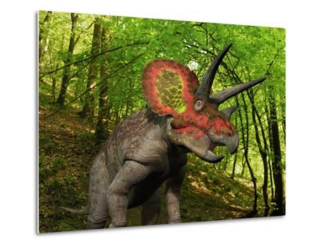 A Colorful Triceratops Wanders a Cretaceous Forest-Stocktrek Images-Metal Print
