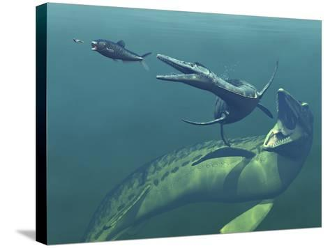Marine Predators of the Cretaceous Period-Stocktrek Images-Stretched Canvas Print