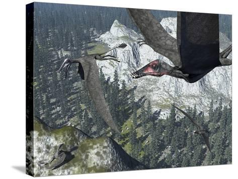 A Flock of Dorygnathus-Stocktrek Images-Stretched Canvas Print