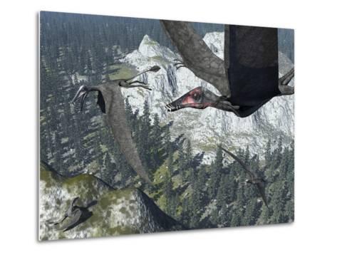 A Flock of Dorygnathus-Stocktrek Images-Metal Print
