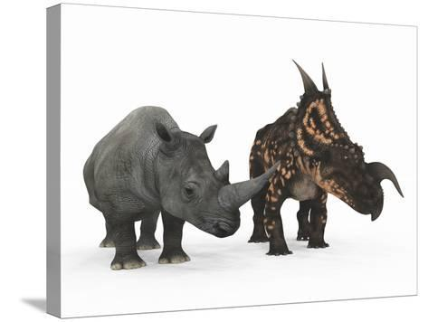An Adult Einiosaurus Compared to a Modern Adult White Rhinoceros-Stocktrek Images-Stretched Canvas Print