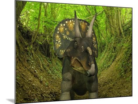 A Nedoceratops Wanders a Cretaceous Forest-Stocktrek Images-Mounted Photographic Print