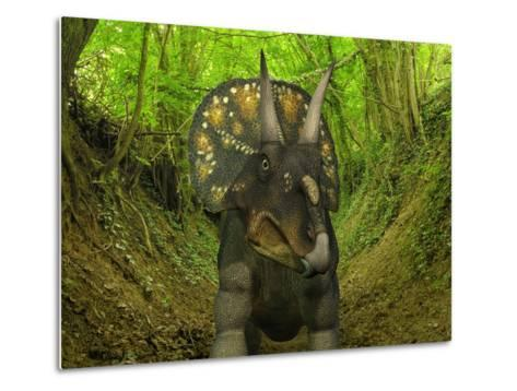 A Nedoceratops Wanders a Cretaceous Forest-Stocktrek Images-Metal Print