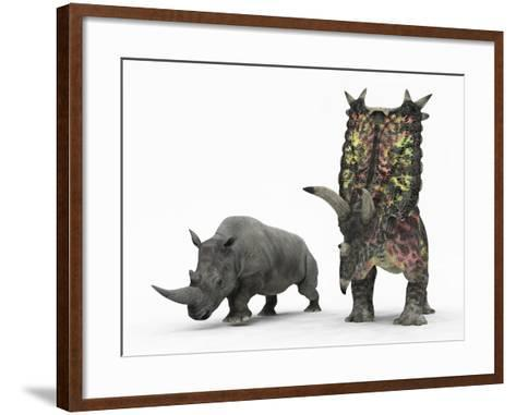 An Adult Pentaceratops Compared to a Modern Adult White Rhinoceros-Stocktrek Images-Framed Art Print