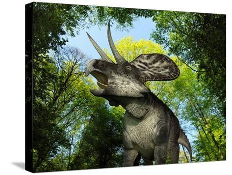 A Zuniceratops Wanders a Cretaceous Forest-Stocktrek Images-Stretched Canvas Print