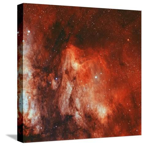 The Pelican Nebula-Stocktrek Images-Stretched Canvas Print