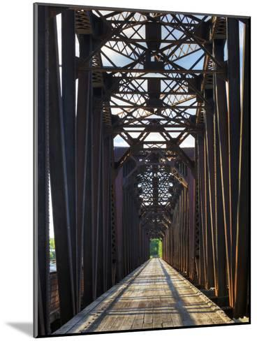 An Old Steel Bridge That Crosses the South Saskatchewan River-Pete Ryan-Mounted Photographic Print