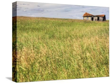 A Log Cabin Collapses into the Prairie Landscape-Pete Ryan-Stretched Canvas Print